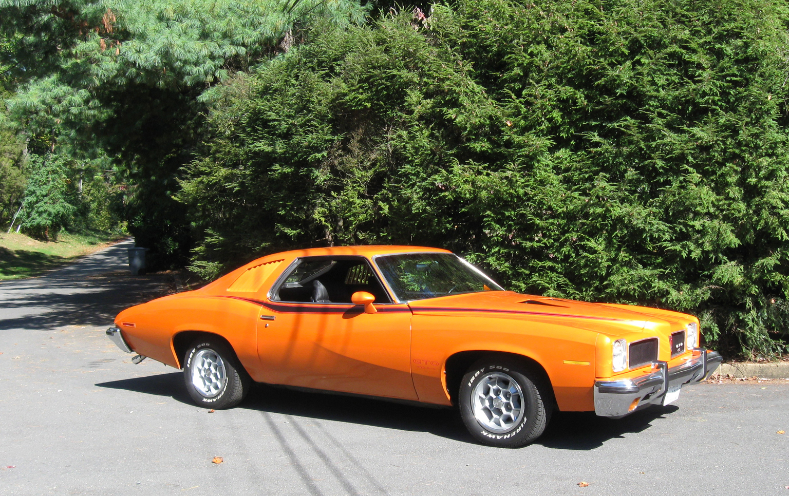 1973 Pontiac LeMans Was Riddled with Rust - Classic Classics ...