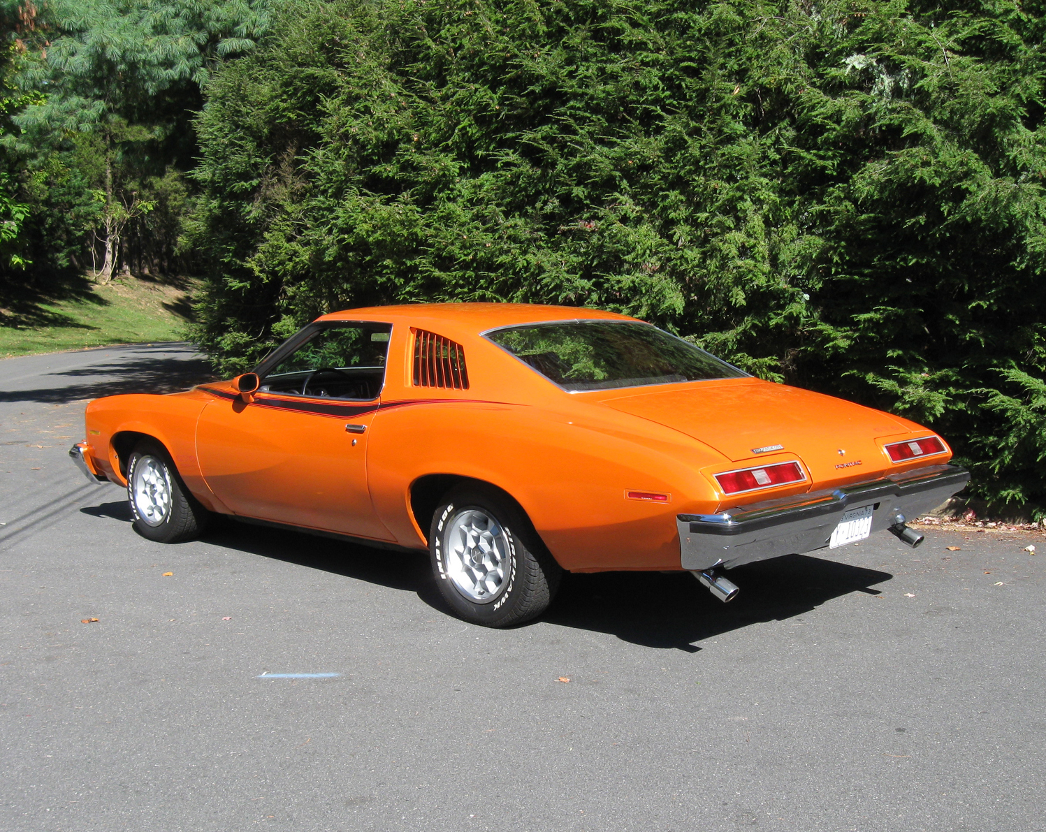 1973 Pontiac Lemans Was Riddled With Rust Classic